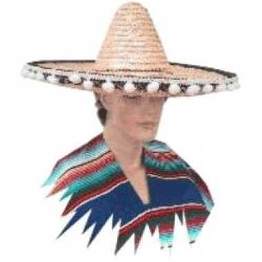 Mexicaanse grote sombrero